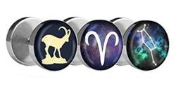 Zodiac Sign Fake Plugs
