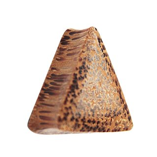 Wood Ear Plug - Triangle - Palm Wood - Light