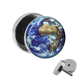 Picture Fake Plug - Earth